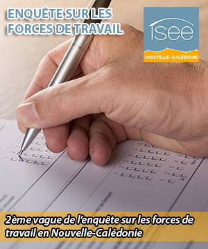 isee_focus_sur.png